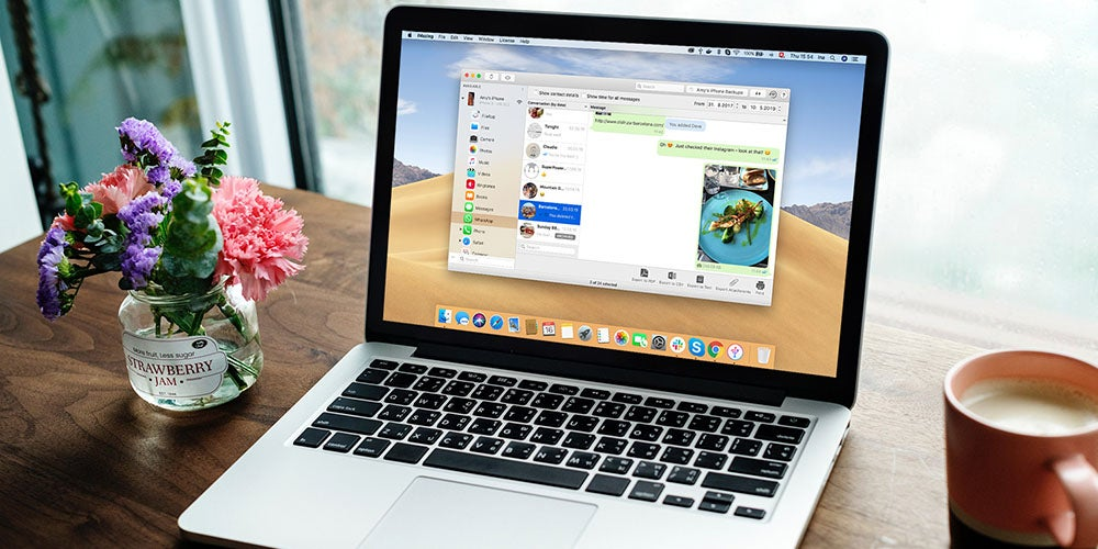 iMazing iOS Device Manager: Universal License for Mac and PC