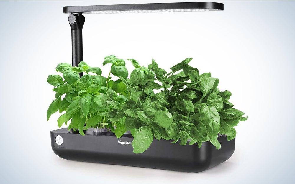 Hydroponics Growing System,Grow Smart for Plant, Built Your Indoor Garden