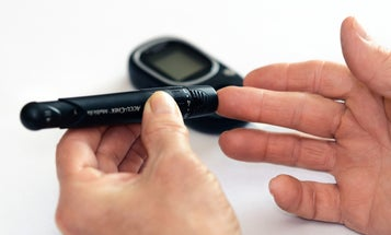 Sea snail venom could lead to better insulin for diabetics