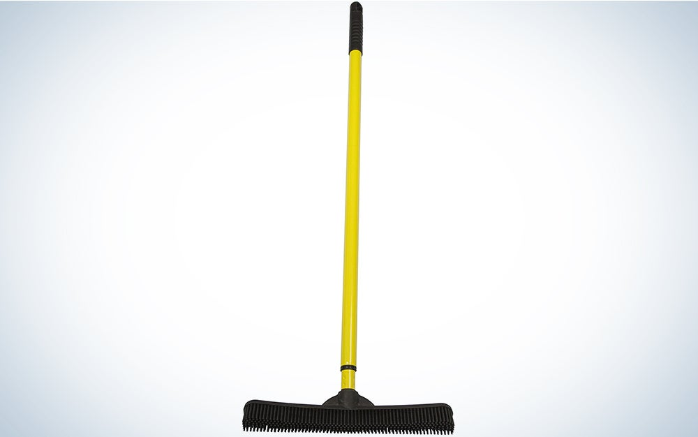Evriholder FURemover SW-250I-AMZ-6, Pet Hair Removal Broom with Squeegee