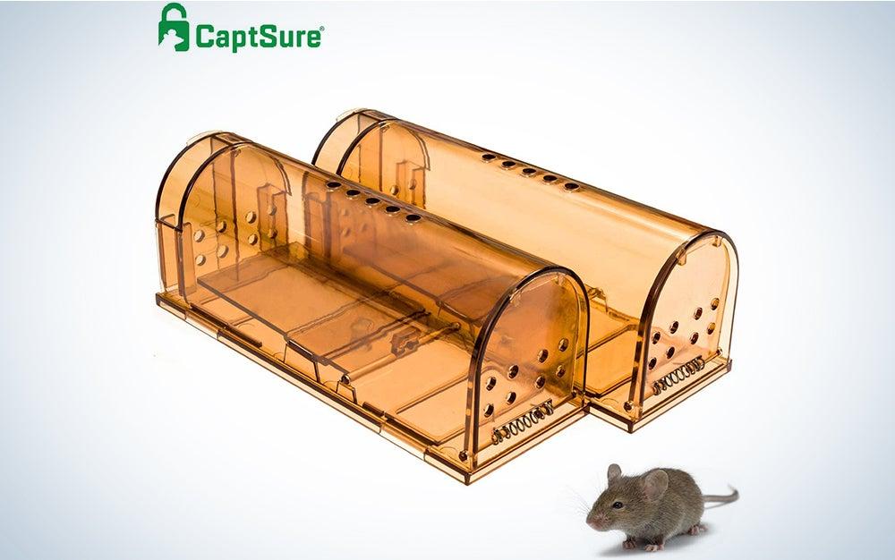 CaptSure Original Humane Mouse Traps