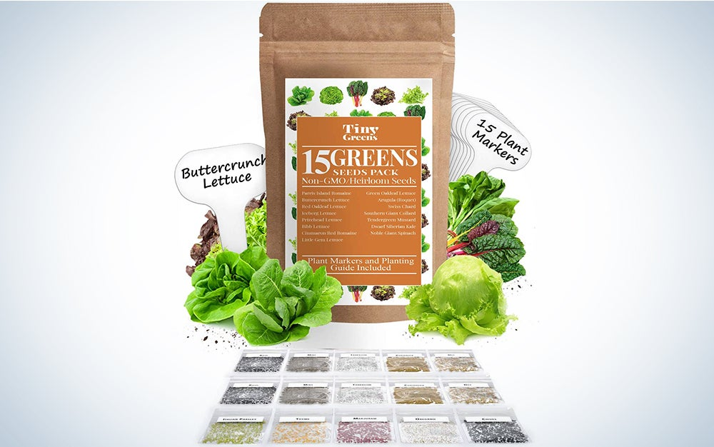 15 Heirloom Lettuce & Leafy Vegetable Seeds