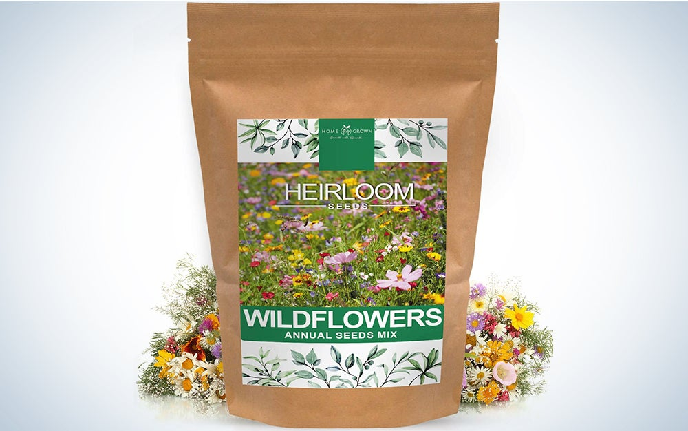 Mix of 21 Different Varieties of Non-GMO Wildflower Seeds