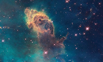 What animal do you see in this image of a nebula?