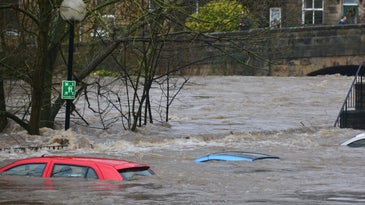 cars flooded by water
