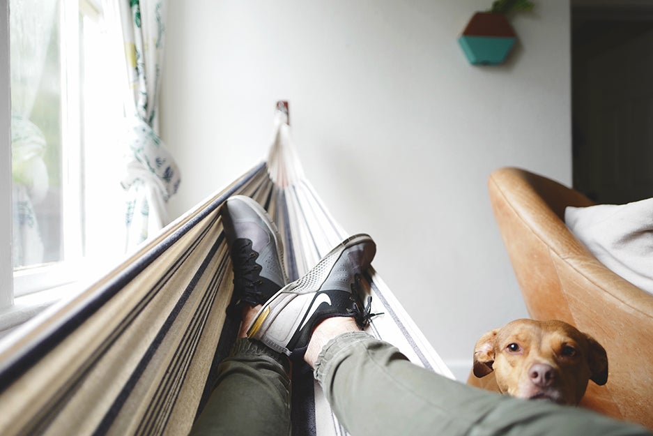 person in hammock with dog next to them