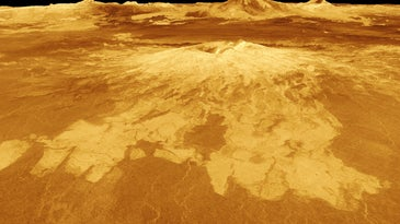 A volcano named Sapas Mons dominates this computer-generated view of the surface of Venus.