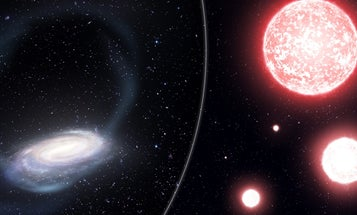 A local stellar graveyard could reveal our galaxy's beginnings