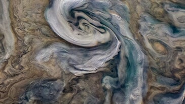 These storms are thought to contain a kind of water-ammonia hail ('mushballs') specific to Jupiter's atmosphere, which drags the ammonia down into the deep atmosphere and may explain the presence of shallow lightning flashes.