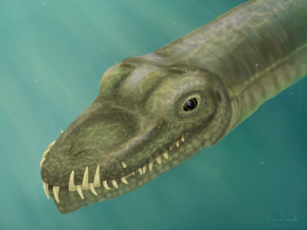 artist rendition of Tanysropheus