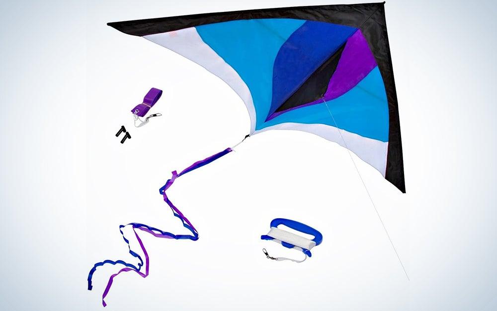 Large Delta Kite