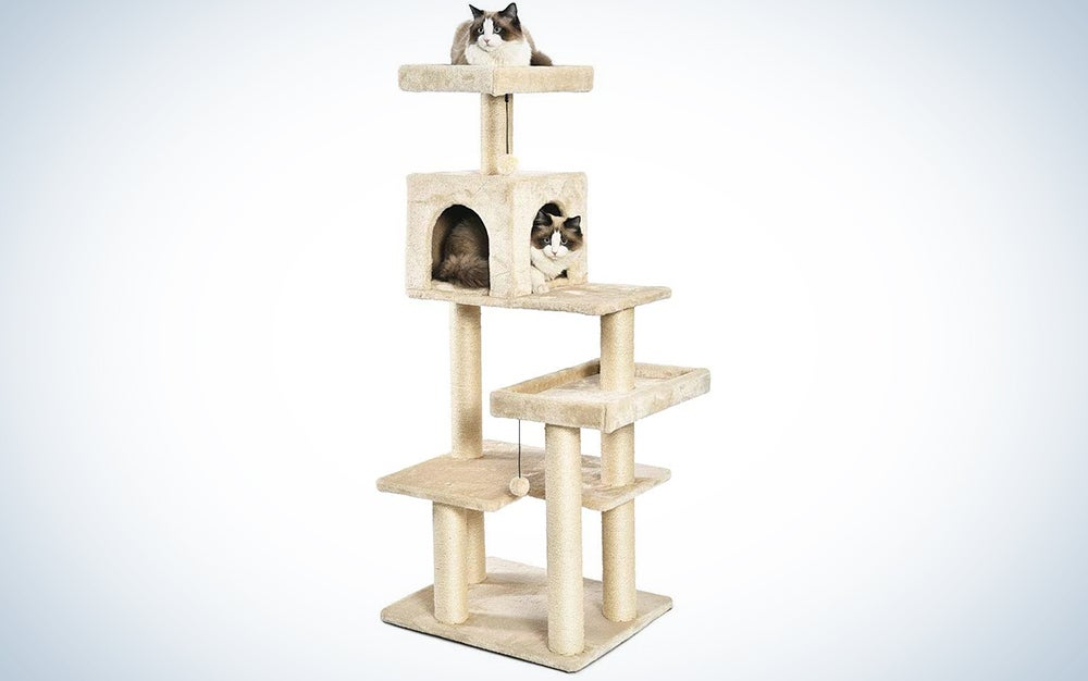 AmazonBasics Multi-Level Cat Tree with Scratching Posts