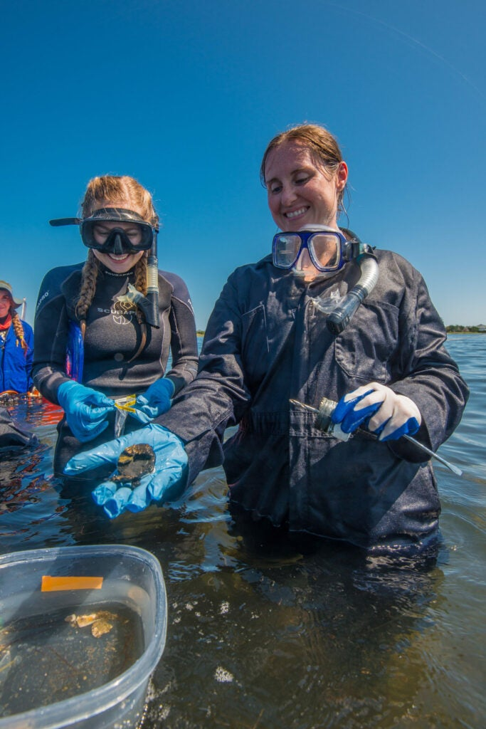 field and price two female researchers taking samples from ocean water