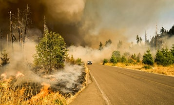 California and the Forest Service have a plan to prevent future catastrophic fires
