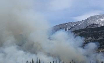 California wildfires may give way to massive mudslides