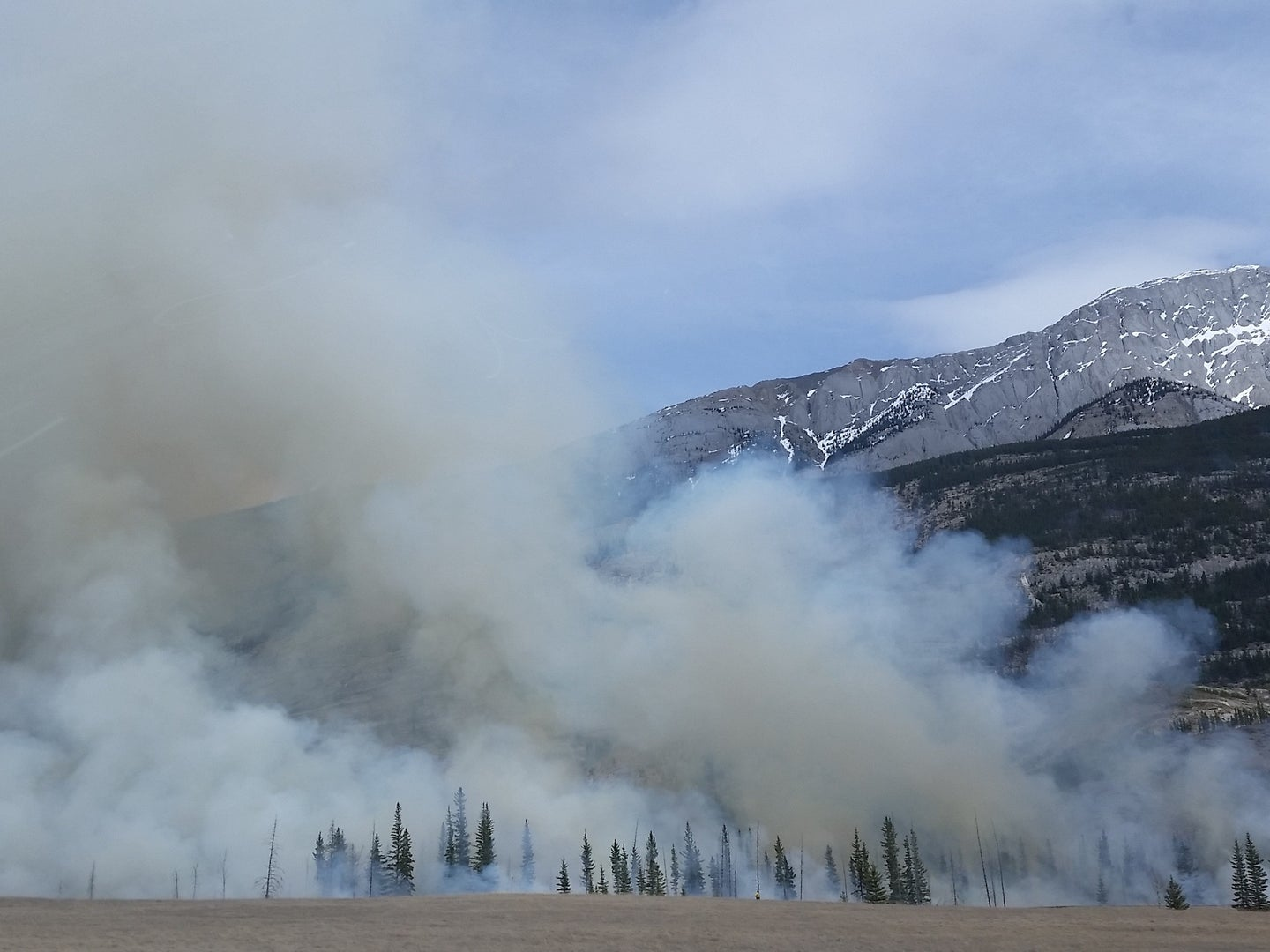 smoke rising from forest fire with mountain in background