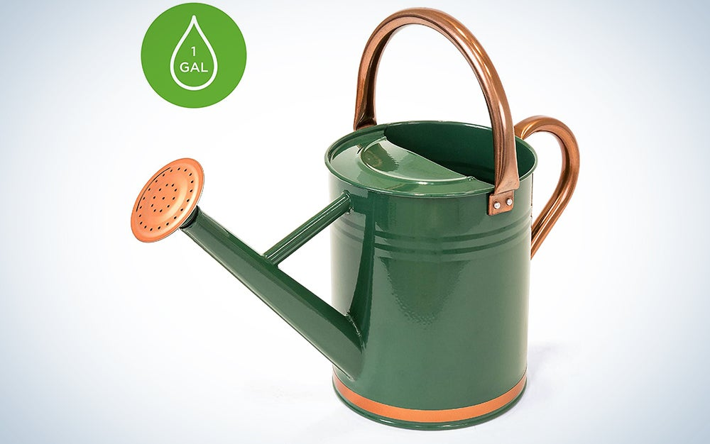 Best Choice Products 1-Gallon Lightweight Galvanized Steel Gardening Watering Can