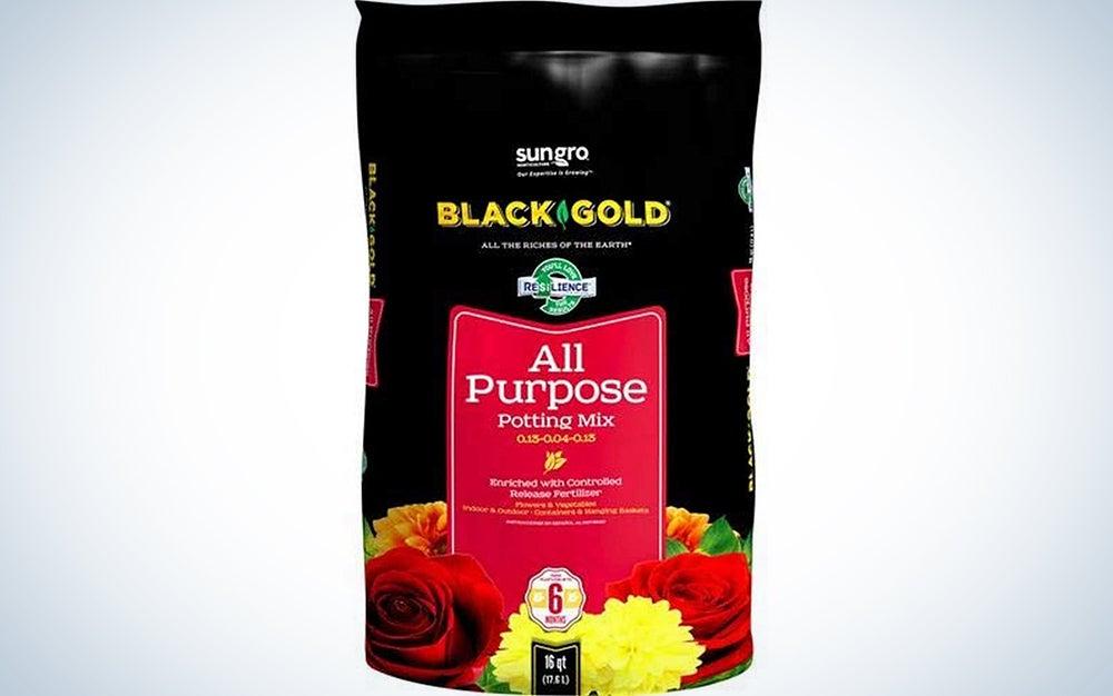 Black Gold 16-Quart All Purpose Potting Soil With Control
