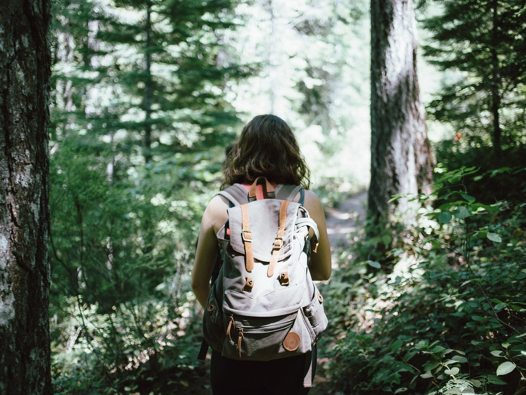 Nature walks can trigger feelings of awe, but you can achieve the feeling inside, too.