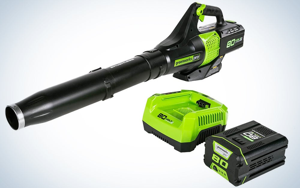 Greenworks BL80L2510 80V Jet Electric Leaf Blower, 2.5Ah Battery and Charger Included