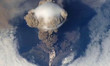 A volcanic eruption may have helped the dinosaurs take over the world