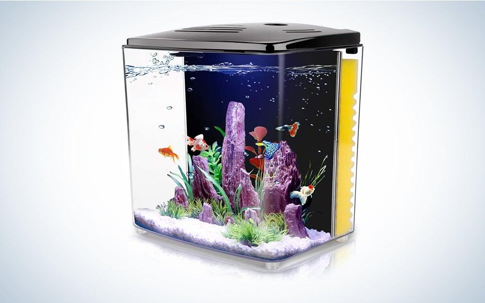 Freesea 1.4 Gallon Betta Aquarium Fish Tank