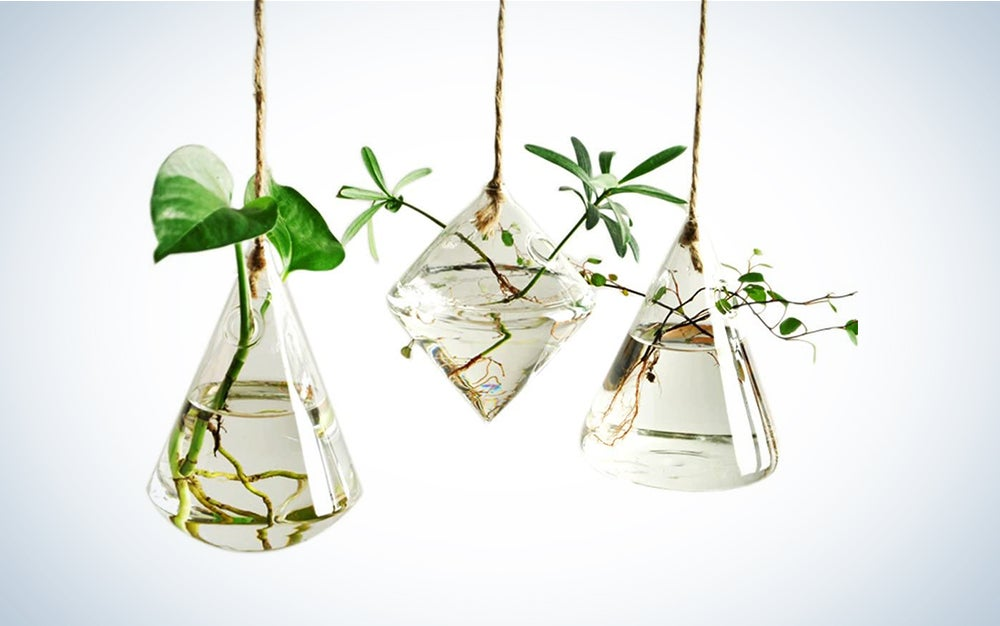 Ivolador Terrarium Container Flower Planter Hanging Glass for Hydroponic Plants