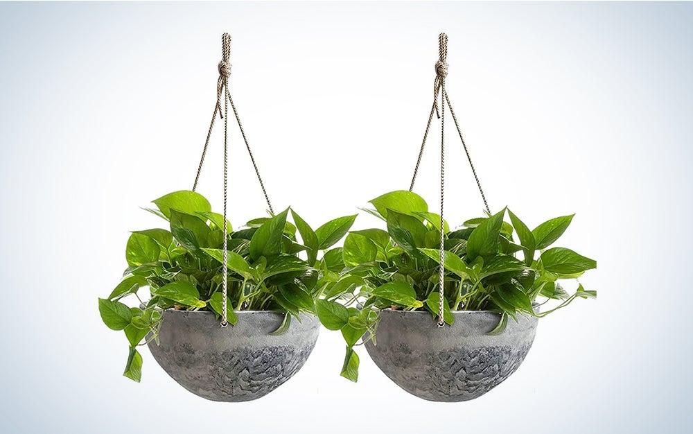 Hanging Planters for Indoor Plants - 10 Inch Flower Pots Outdoor Garden Planters Pots