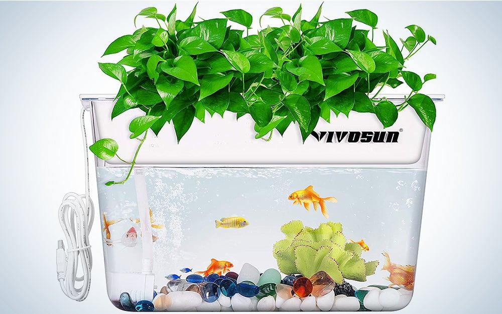 Vivosun Aquaponic Fish Tank