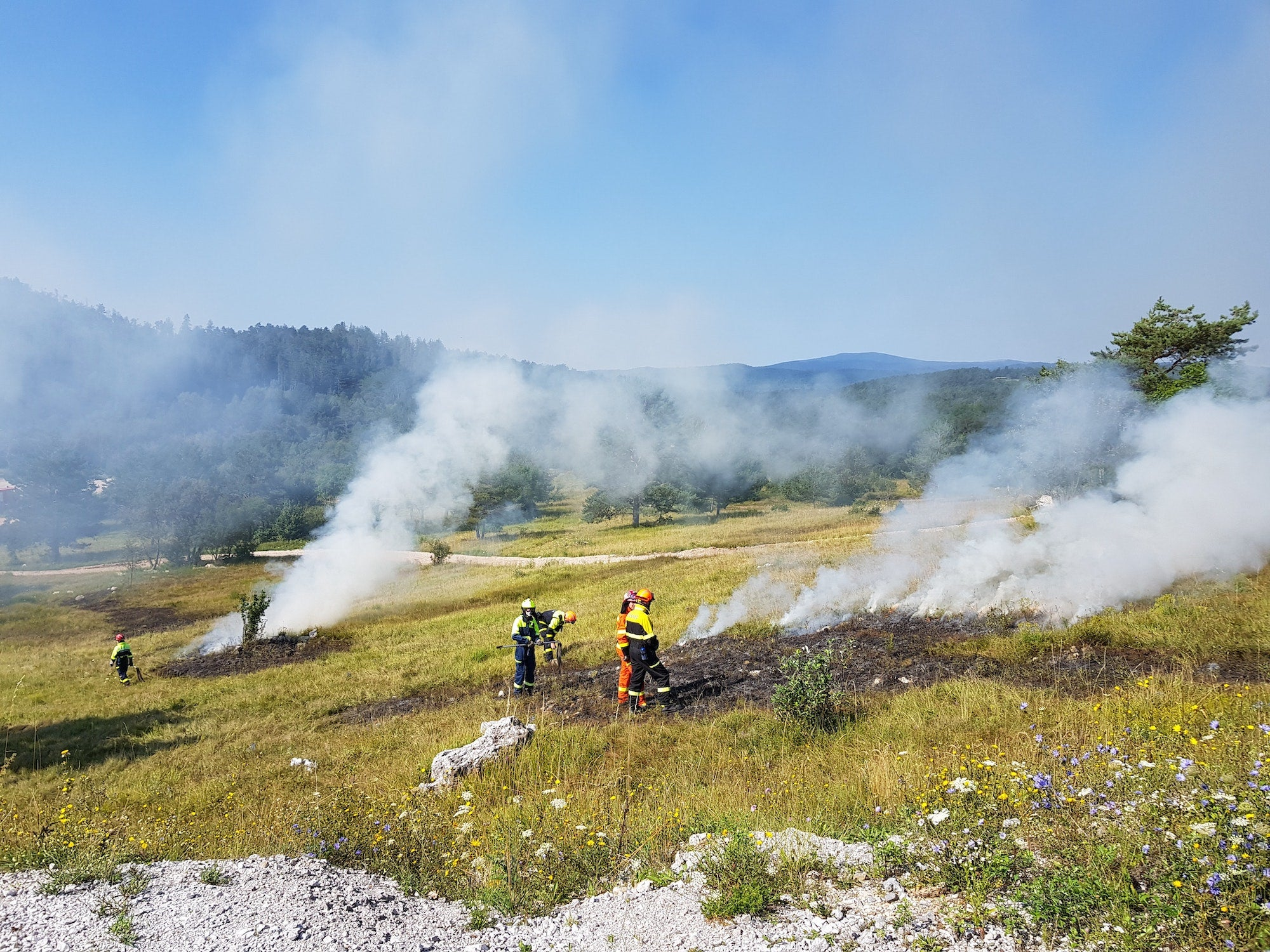firefighters standing in a field full of small plumes of smoke
