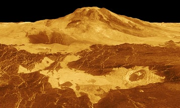 Three ways scientists could search for life on Venus