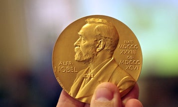 The Nobel Prize in Medicine goes to the trio that discovered hepatitis C