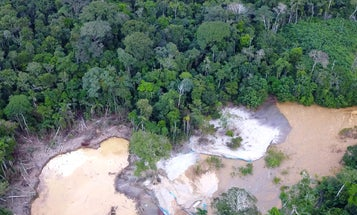 A pandemic-created 'gold rush' in the Amazon is destroying Indigenous lands