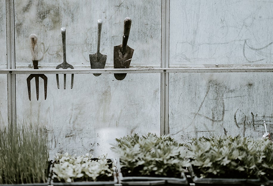 tools in a greenhouse