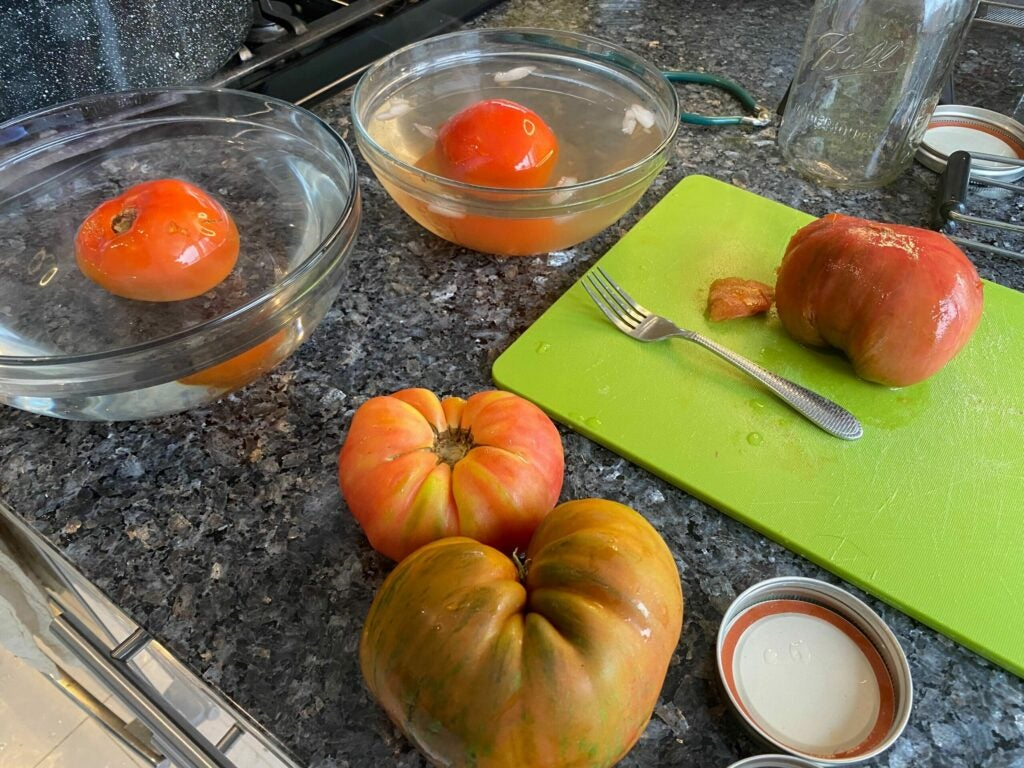 fresh tomatoes, a tomato in a bowl of hot water, a tomato in a bowl of cold water, and a tomato on a cutting board, in the canning process