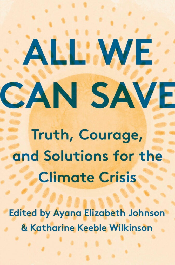 All We Can Save book cover.