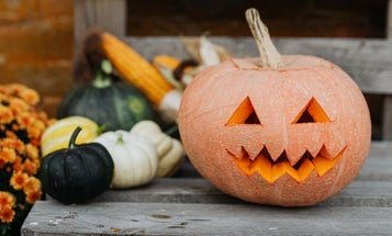 How to safely celebrate Halloween during COVID-19