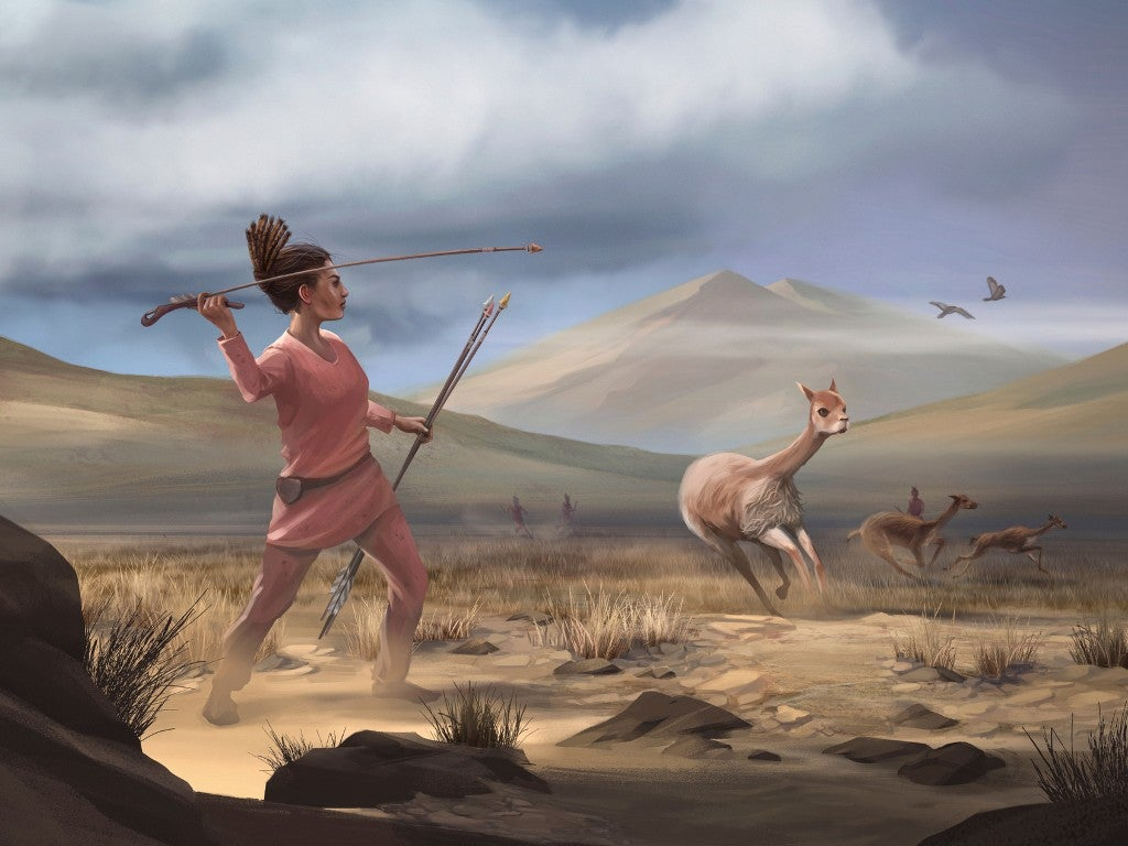 Artist reconstruction of Wilamaya Patjxa vicuña hunt.
