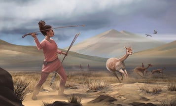 A female hunter's remains hint at more fluid gender roles in the early Americas
