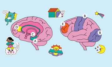 How your brain conjures dreams