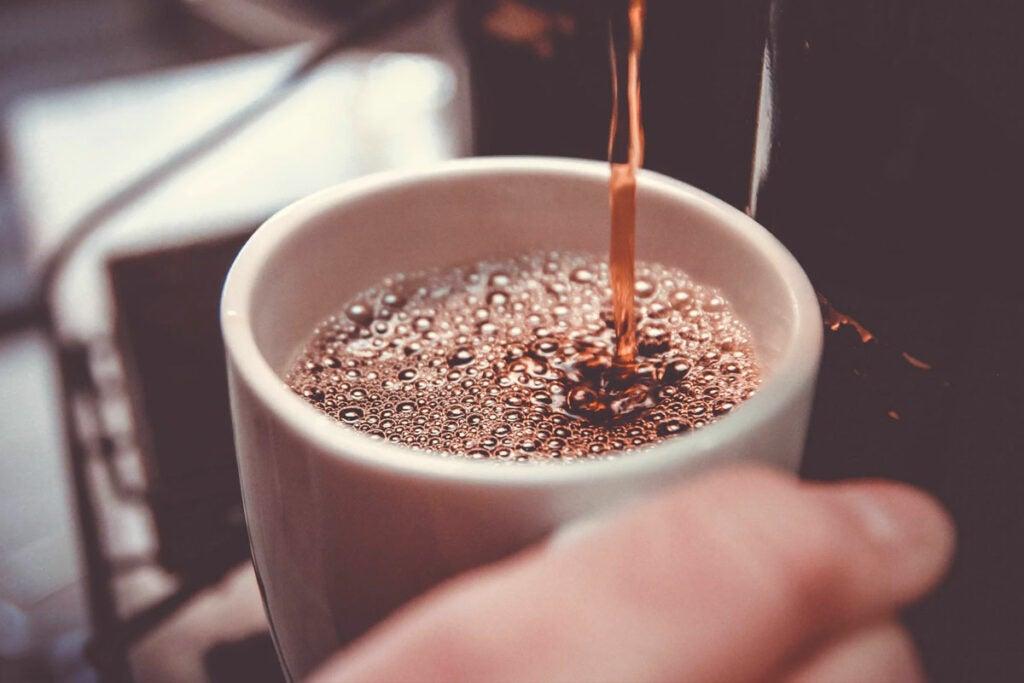 Gourmia GCM7800 Brewdini 5-Cup Cold Brew Coffee Maker