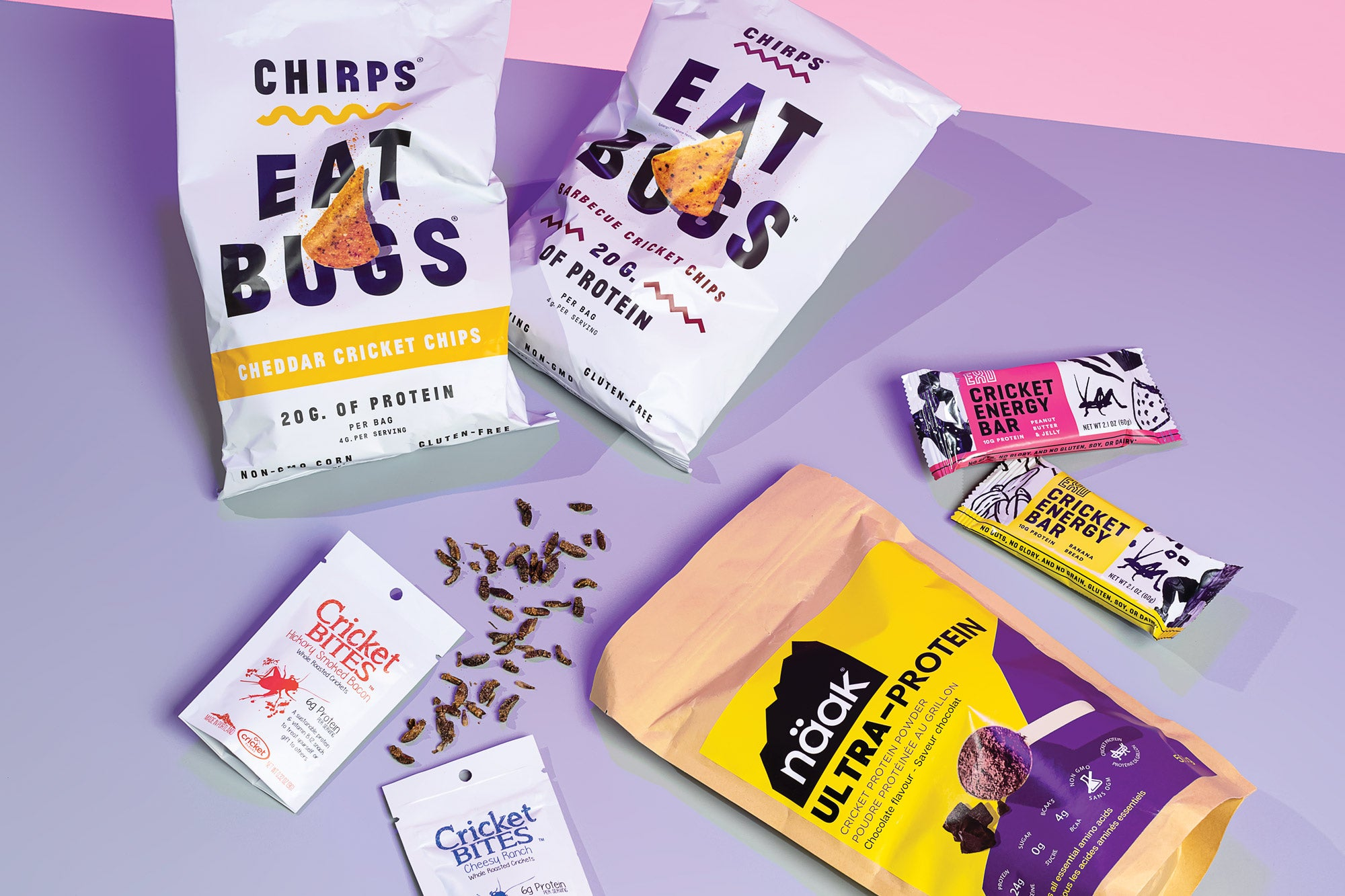 edible bug snacks