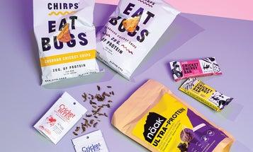 Cricket-based snacks are surprisingly delicious