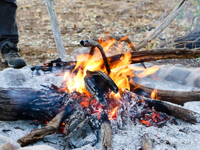 a campfire in a designated fire area