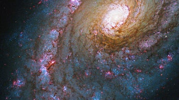 This image of Caldwell 45, captured by Hubble's Wide Field Camera 3, provides a larger view, showing more of the galaxy. The bluish color swirling around the galaxy's center indicates the presence of young, hot stars in Caldwell 45's spiral arms.