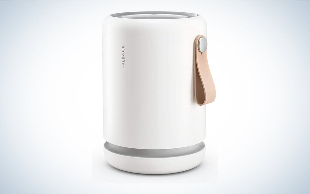 Molekule Air Mini+ Small Room Air Purifier with Particle Sensor and PECO Technology for Allergens, Pollutants, Viruses, Bacteria, and Mold is our favorite Molekule air purifier.