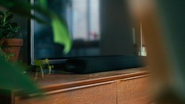 Best soundbar and tv on a brown media console with plant leaves