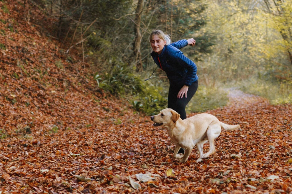 Complete Guide to Puppy and Dog Training Bundle