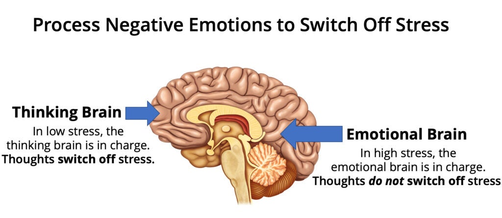 Thought vs. emotion in the brain