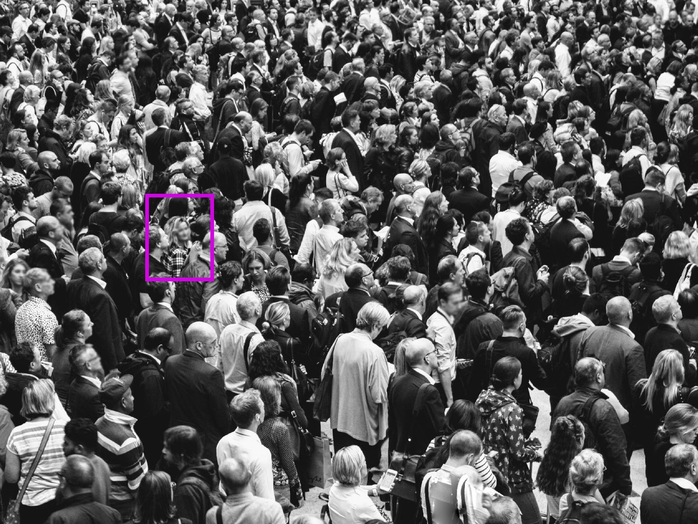 Stock image of a crowd from an unspecified event.